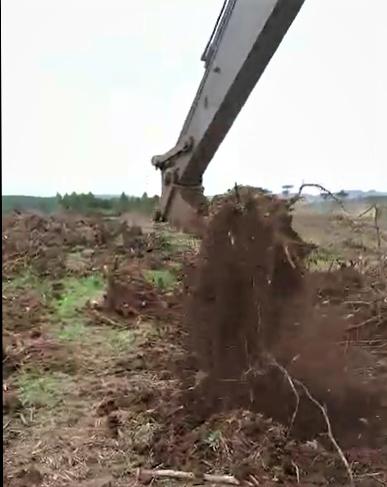 caçamba destocadora concha destocadora destocador de eucalipto destocador mecanico escavadeira